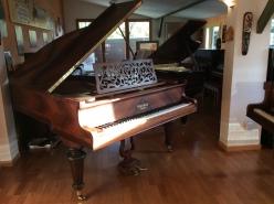 Soleil rasant sur un piano en Palissandre
